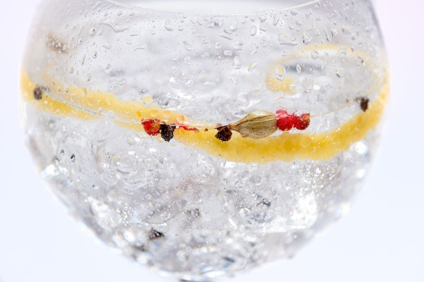gin-tonic-perfecto-03
