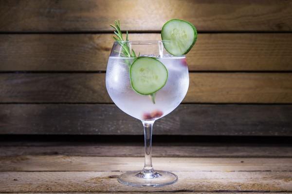 la-bebida-perfecta-gin-tonics