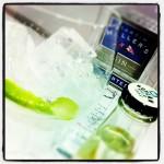 Gin tonic Ginebra Martin Miller