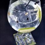 Gin Tonic con enebro