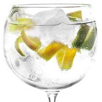 Gin Tonic: El origen