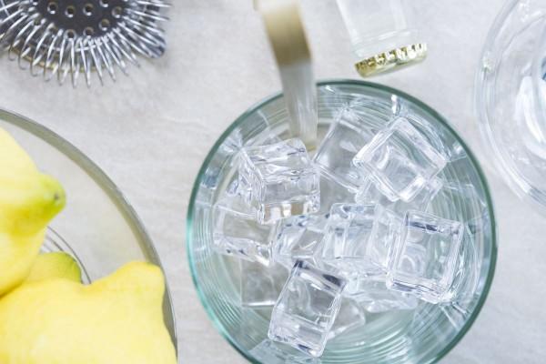 Fotos detalladas de la preparación de un Gin Tonic - paso 10